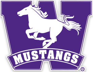 Image result for western mustangs